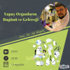 Yapay_Organlar__n_Bug__n___ve_Gelece__i.png